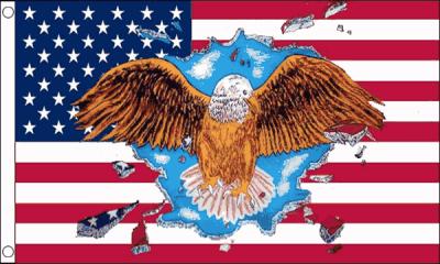 Drapeau USA Aigle